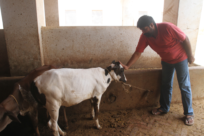 Edhi Animal Hostel – Edhi Welfare Organization